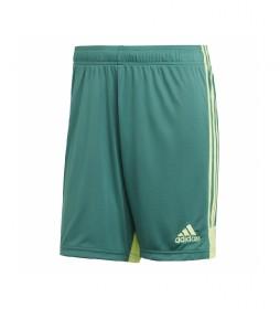 Pantalón Corto Tastigo19 verde