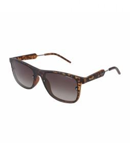 Gafas de sol PLD6018S marrón