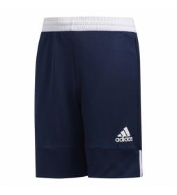Pantalones 3G SPEE REV SHR marino