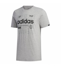 Camiseta Adi Internacional gris