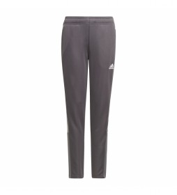Pantalón Tiro gris