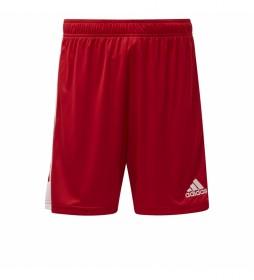 Shorts Tastigo 19 rojo