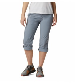 Pantalones Silver Ridge 2.0 gris