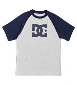 Camiseta Star Raglan HSS gris, azul