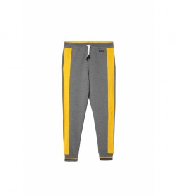 Pantalones Peter gris, amarillo