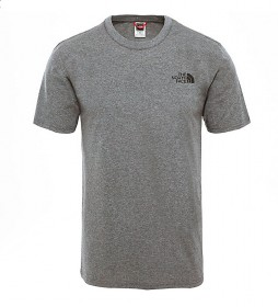 The North Face T-shirt grigia a cupola semplice
