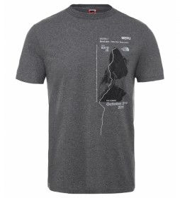 The North Face Celebr grey t-shirt