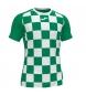 Comprar Joma  Camiseta Flag II verde, blanco