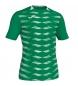 Camiseta Myskin verde
