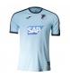 Camiseta Entrenamiento Hoffenheim azul