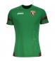 Camiseta Entreno Torino verde