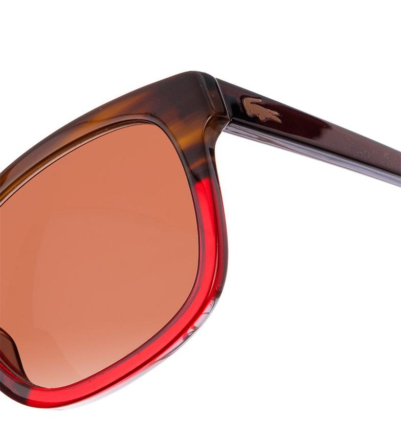 Lacoste L814s Solbriller-210 Brun, Rød