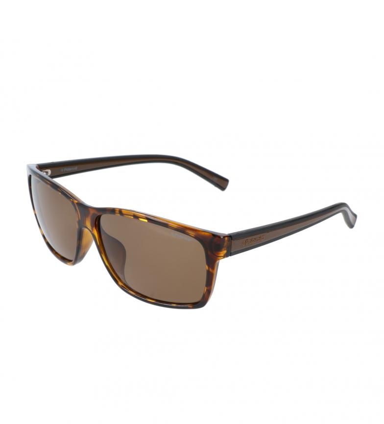 Comprar Polaroid Sunglasses PLD2027F brown