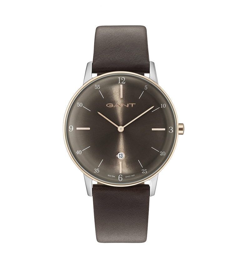 Comprar Gant PHOENIX_G brown watch