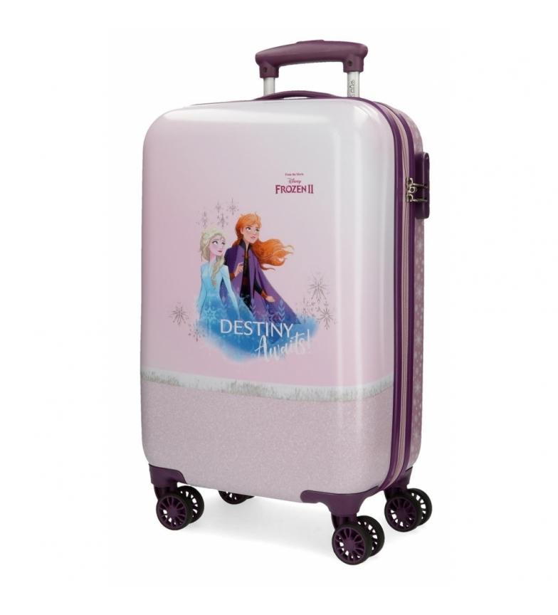 Comprar Frozen Etui cabine Spiritueux de la nature surgelés violet rigide -34x55x20cm