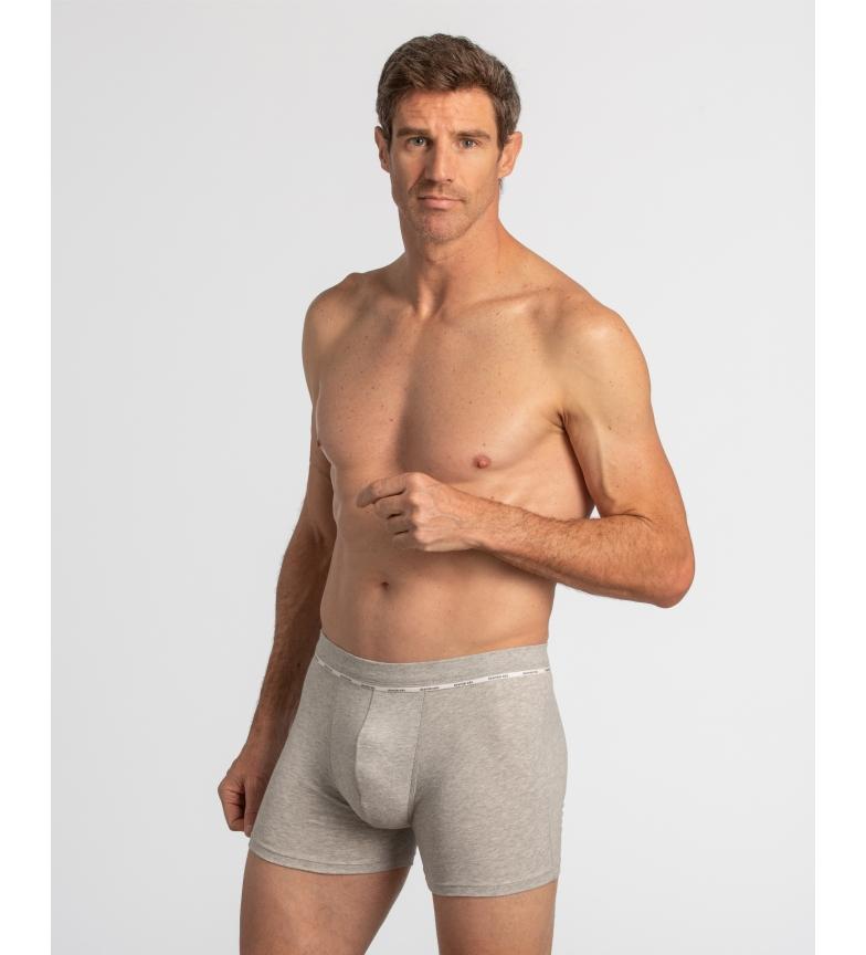 Comprar Abanderado Boxer fechado em algodão penteado Suavidade real em cinza