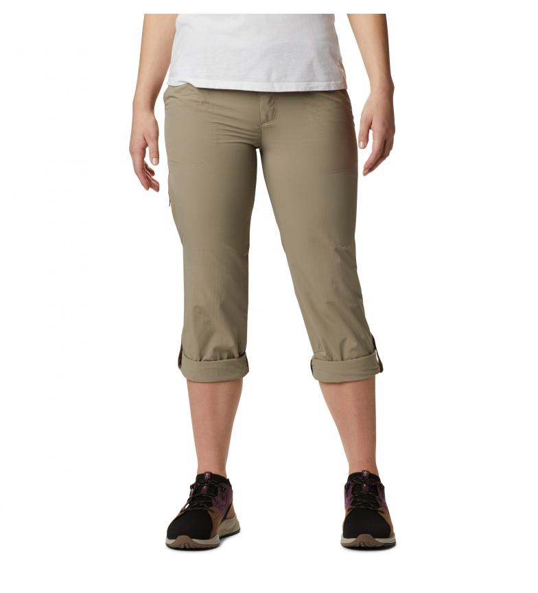 Comprar Columbia Pants Silver Ridge 2.0 brown