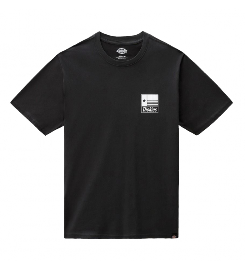 Dickies Taylor T-shirt preta