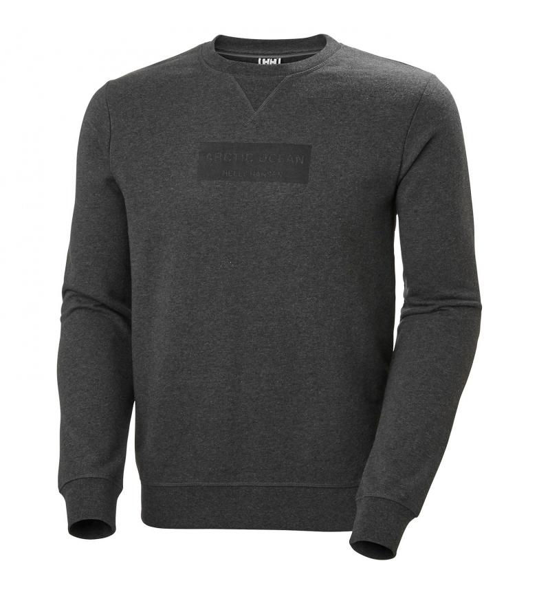 Comprar Helly Hansen Sweat-shirt Artic Ocean gris