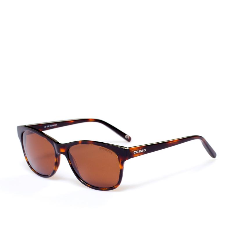 Comprar Ocean Sunglasses Lunettes de soleil Taylor havane briller