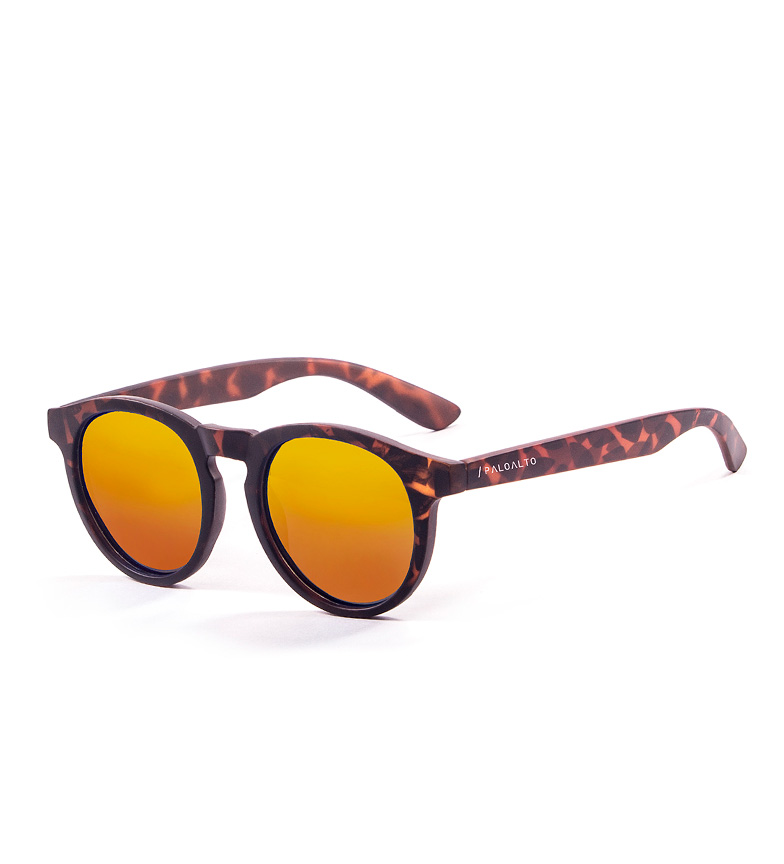 Comprar PALOALTO Sunglasses Newport Havana dark