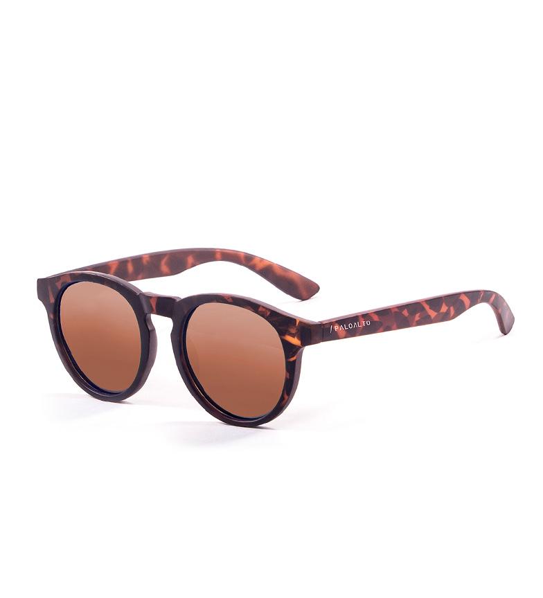 Comprar PALOALTO Sunglasses Newport Havana