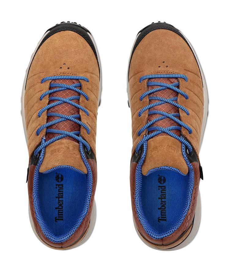 Comprar Timberland Parker Ridge GTX Low Hiker sapatos de couro marrom / Gore-Tex