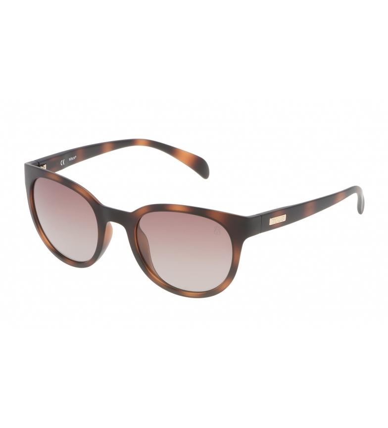 Comprar Tous Gafas de sol STO912 havana