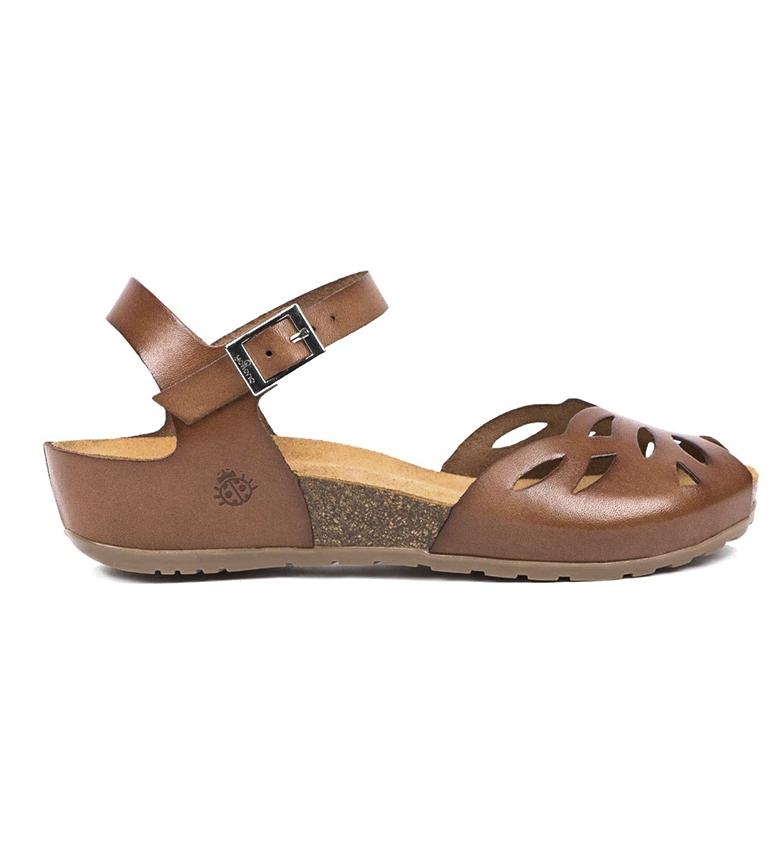 Comprar Yokono Sandali in pelle marrone Capri 003 - Altezza zeppa: 4cm